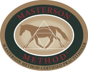 Masterson Method Weekend Seminar Nederland
