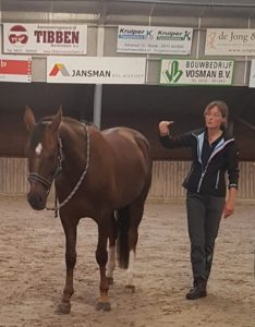 Demonstratie paard Masterson Methode