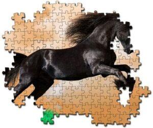 Natuurlijke scheefheid paard_puzzel